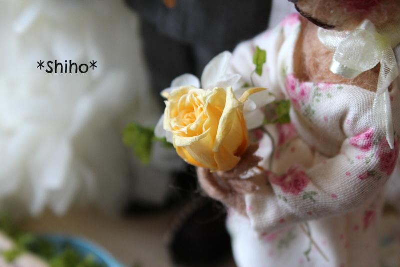 IMG_8559blog.jpg