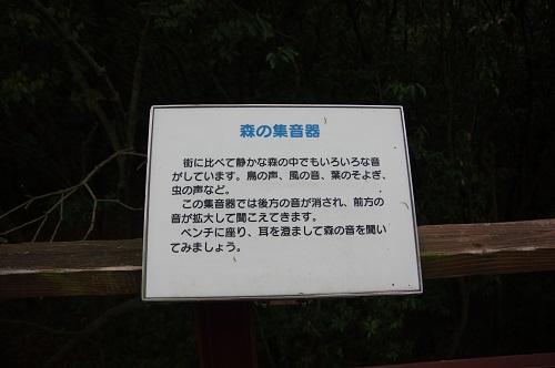 0035森の集音器