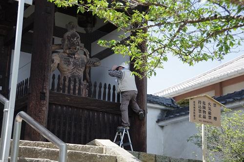 0027當麻寺仁王像