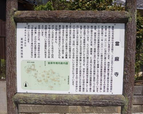 0028當麻寺