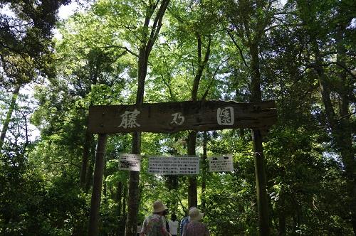 0026藤乃園