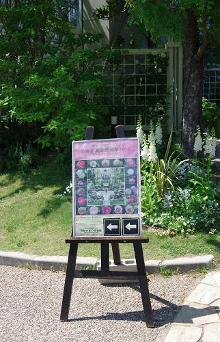 0208ジョセフィーヌの庭