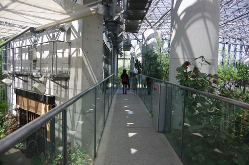 0227植物園