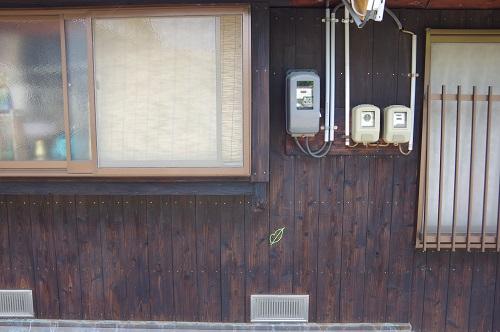 0172毛糸アート