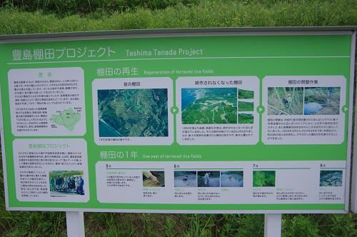 0181豊島棚田プロジェクト