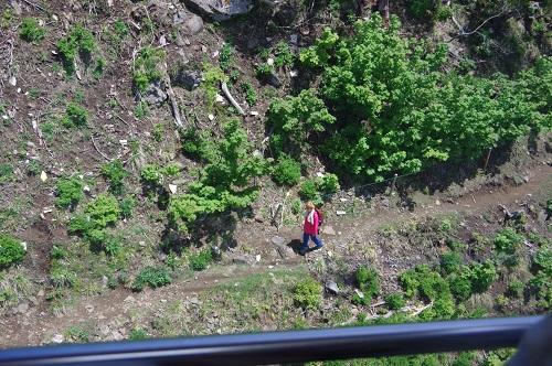 0024琵琶湖バレイトレッキング
