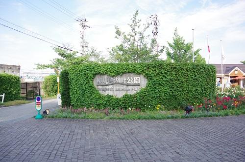 0207柳が崎湖畔公園