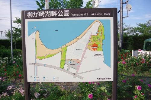 0209柳が先湖畔公園地図