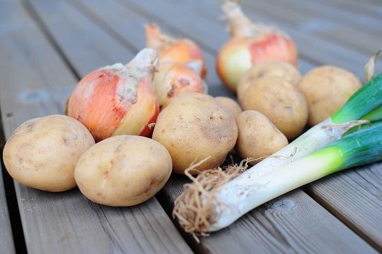 norip野菜