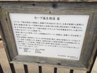 15.4.29 広島カープ物語2