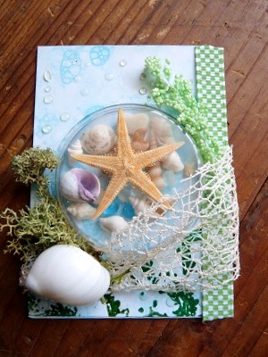ATC seashell Shaker box