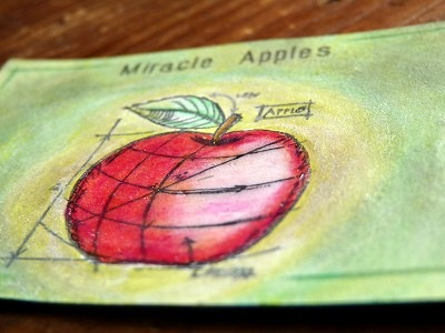 ATC 「奇跡のリンゴ」