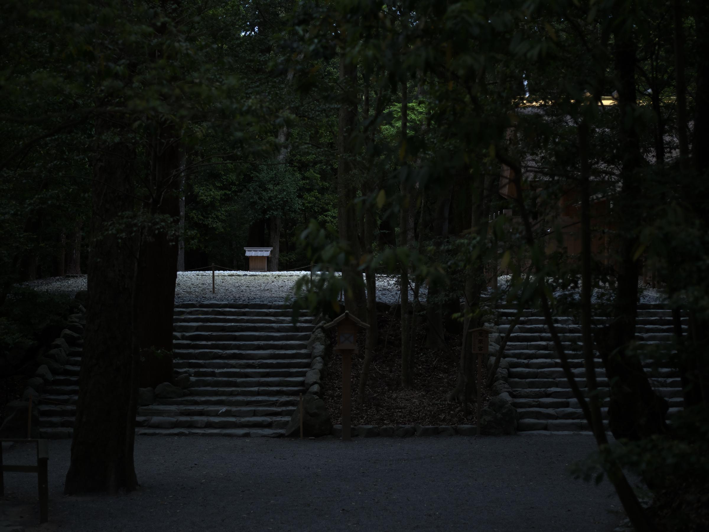IMGP9332.jpg