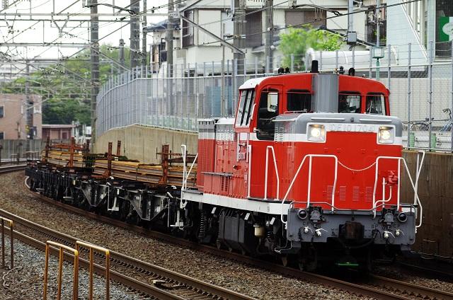 IMGP2345 (2)