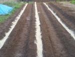 肥料と米糠を撒いて