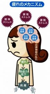 疲れが取れない人の活性酸素に!機能性表示食品、元気ドリンク【日本予防医薬 イミダペプチド】モニター価格980円!
