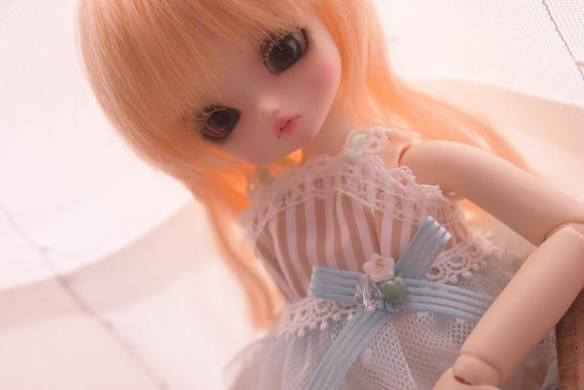 DSC_0538.jpg