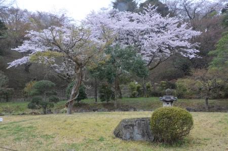 あけぼの山農業公園7