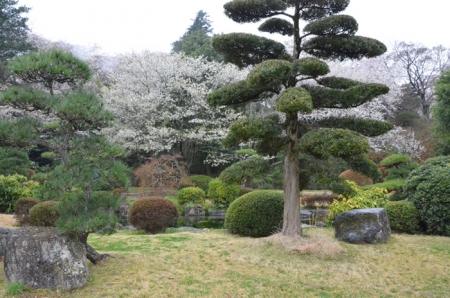 あけぼの山農業公園8