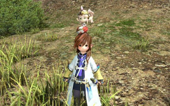FF14_201506_12.png