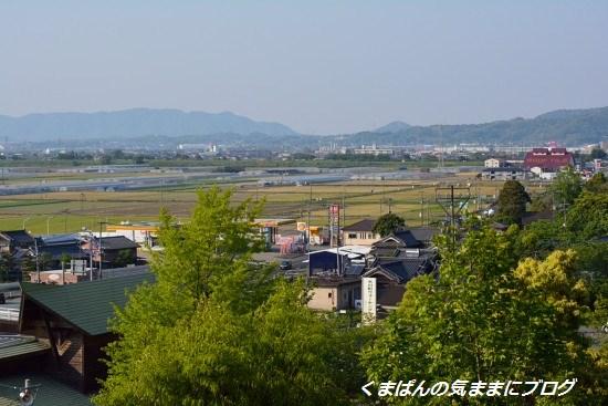 Nikon_20130503_164352.jpg