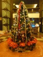 蘆洲マンションロビーのツリー141225