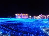 光の宮殿150210