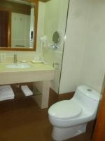 ランディス羅東のトイレ150526
