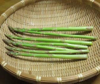 アスパラガス収穫物