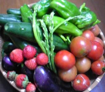 6月の収穫物2