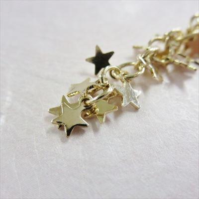 星いっぱい金2_R
