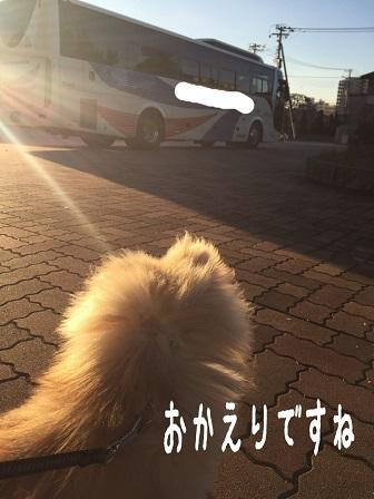 IMG_0679[1]