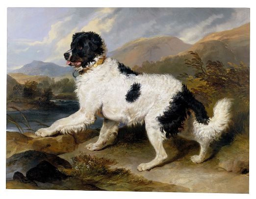 Landseer,_Edwin_Henry_(Sir,_RA)_-_Lion-_A_Newfoundland_Dog_-_Google_Art_Project