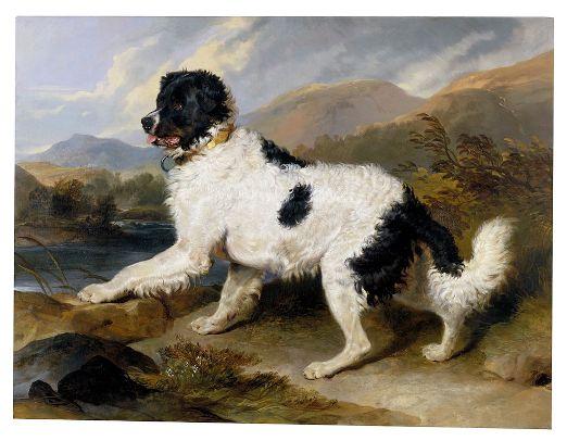 Landseer,_Edwin_Henry_(Sir,_RA)_-_Lion-_A_Newfoundland_Dog_-_Google_Art_Project