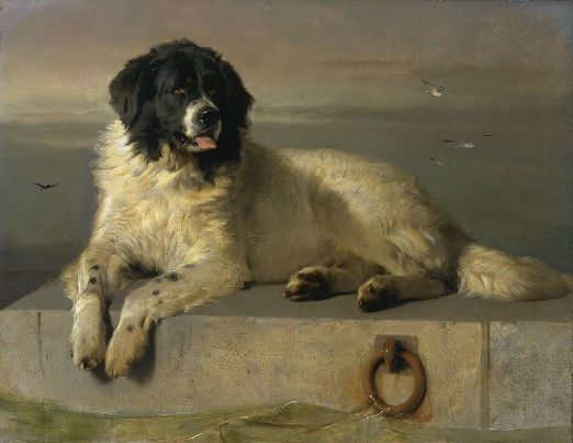 A_Distinguished_Member_of_the_Humane_Society_by_Sir_Edwin_Landseer.jpg
