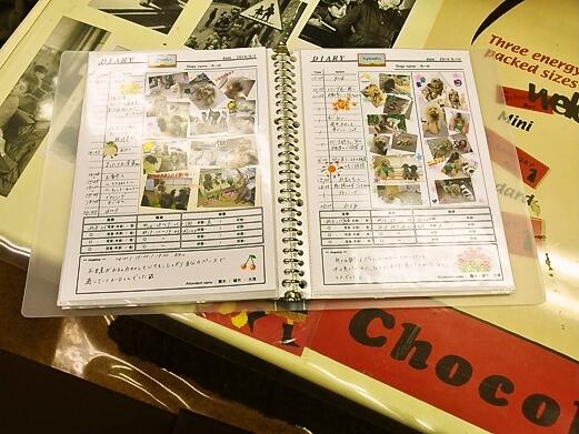 foodpic5894344.jpg