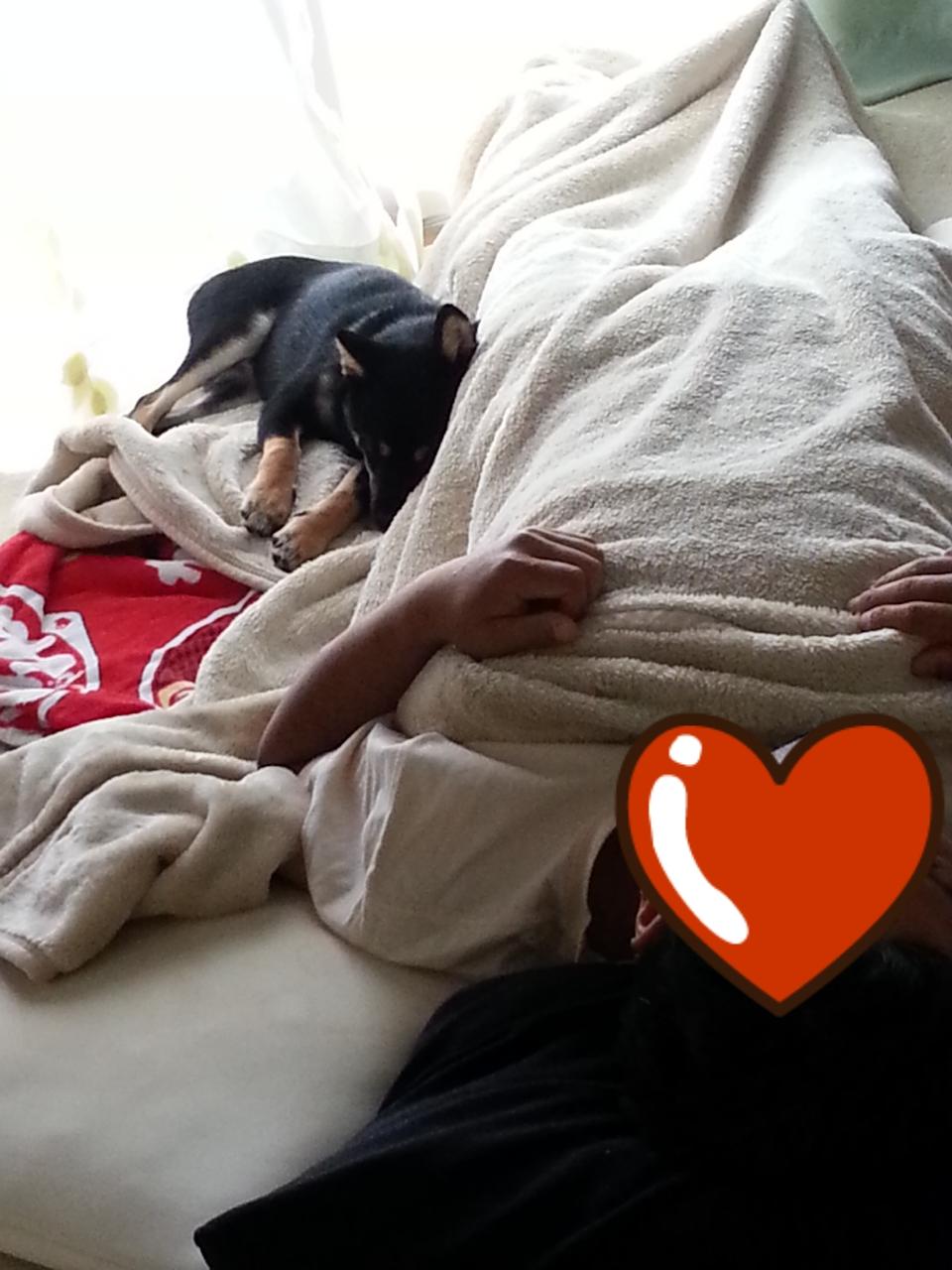 レッドと爆睡甜ちゃん