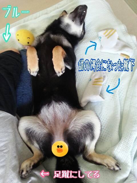 20150607-添い寝