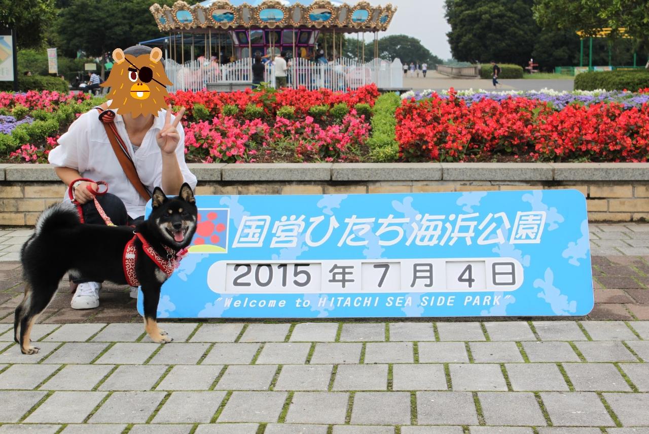 20150704-ひたち海浜公園