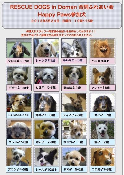 20150524道満里親会参加犬
