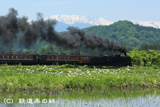 20150523野沢01