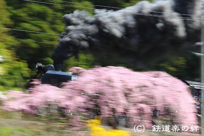 20150418磐梯熱海01