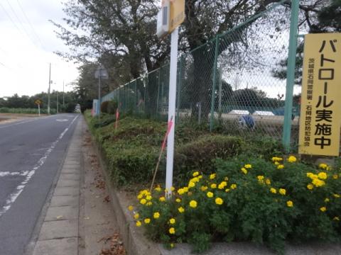 園部中②学校歩道整備