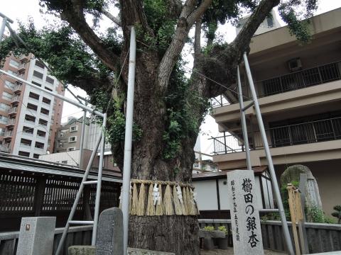 「博多祇園山笠」準備風景⑮