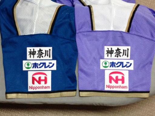 神奈川ワッペン