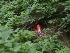 バイク不法投棄