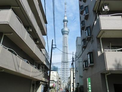 東京旅行(2015年5月)48