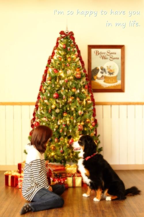 christmas-a.jpg