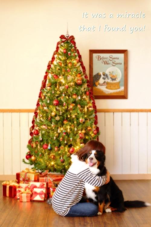 christmas-b(2).jpg