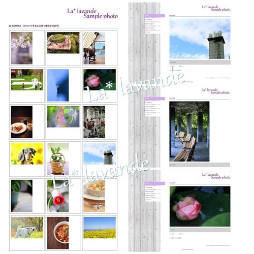 sample-z.jpg